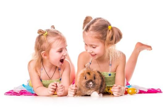Kinder und Tiere: Verantwortung übernehmen und die Gefahr von Allergien senken