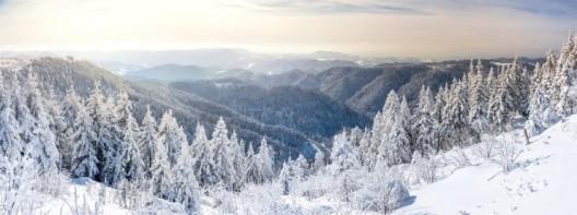 Nachhaltige Skiferien in der Schweiz: So geht's