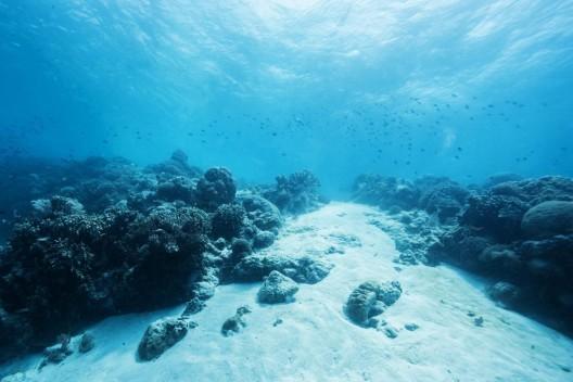 Ozeane sind Seismograph für CO2-Belastung
