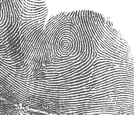 Forensisches Institut Zürich: Fingerabrücke helfen Ermittlern bei der Fahndung