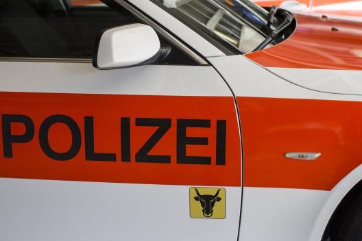 Altdorf UR: Hausdurchsuchungen bei 67-jährigem Schweizer im Tessin und in Uri