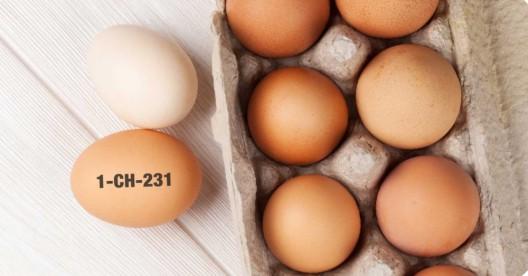 Migros ruft Eier mit dem aufgedruckten Code wegen Salmonellenverdacht zurück
