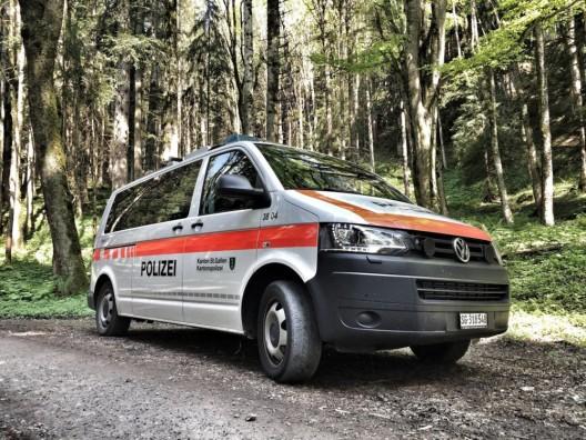 Eichberg SG: Mit Auto in Zaun gefahren – Autofahrerin in fahrunfähigem Zustand
