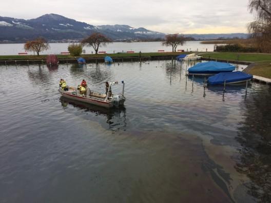 Rapperswil-Jona SG: See durch mehrere Dutzend Liter Treibstoff verschmutzt