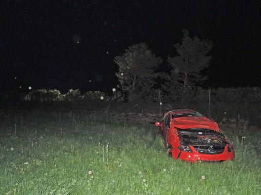 Wigoltingen TG / A7: Auto fährt steile Böschung hoch und überschlägt sich