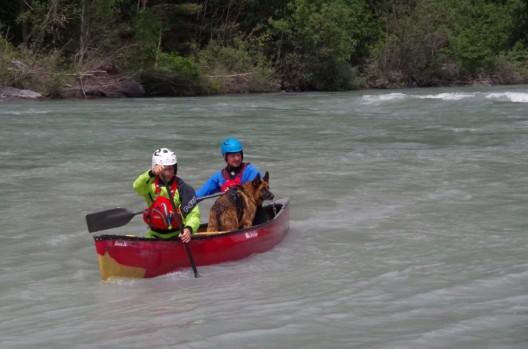Stadtpolizei Chur rückt zu 20 Einsätzen aus - Kajak-Fahrer retten Hund