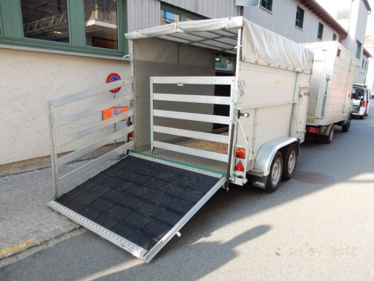 Kanton AR: Kontrolle von Tiertransporten - acht Transportfahrzeuge beanstandet