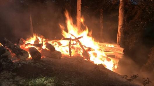 Reigoldswil BL: 25 Ster Holz in Vollbrand geraten – Zeugen werden gesucht