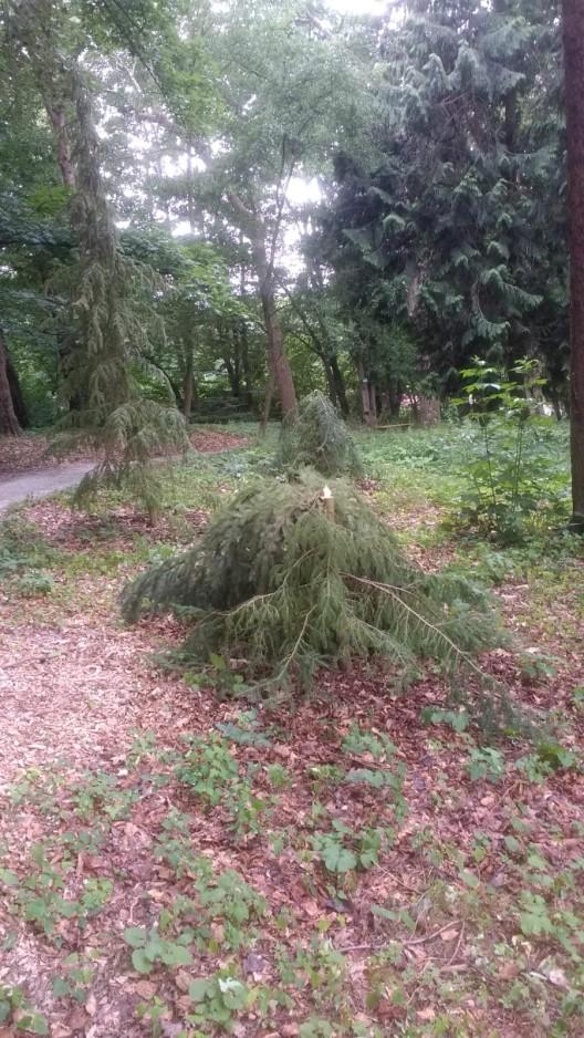 Vandalismus im Park Hohenrode