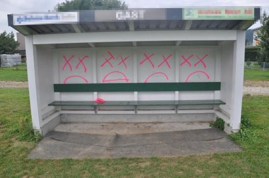 Obergösgen/Winznau SO: Sprayereien verübt - Polizei bittet um Zeugenhinweise