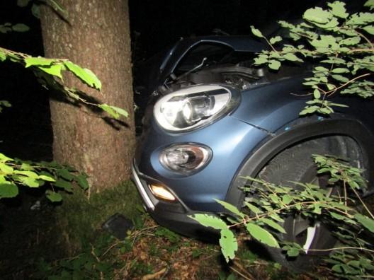 Näfels GL: Autofahrerin weicht Tier aus und prallt gegen Baum