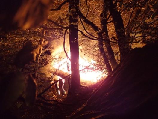 Laufen BL: Holzhütte niedergebrannt – Feuerwehreinsatz – Zeugen gesucht