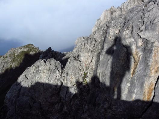 Paragleiter abgestürzt – 19-jährige Wanderin geborgen – weitere Alpinunfälle