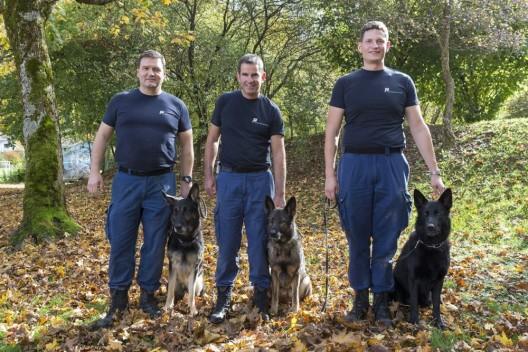 Balsthal / Mümliswil SO: Verbandsprüfung der Polizeihunde – das sind die Gewinner