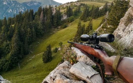 Das Berggebiet unterstützt das neue Jagdgesetz