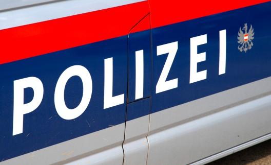 Vibrierender Vibrator in Koffer löst Polizeieinsatz aus