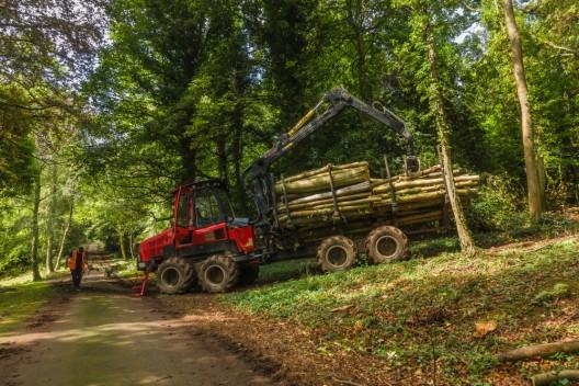 Yvonand VD: Tödlicher Arbeitsunfall mit Traktor