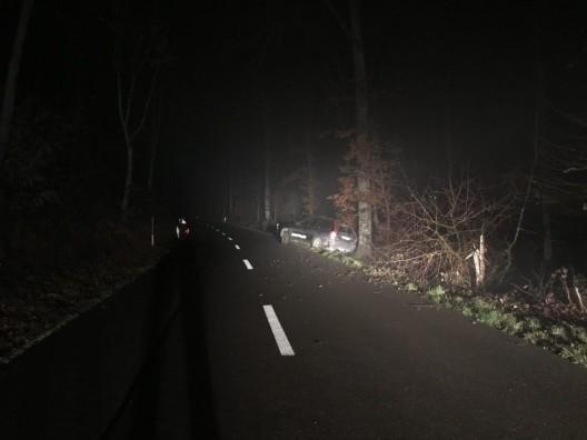 Stetten SH: Autofahrer weicht Reh aus und prallt gegen Baum
