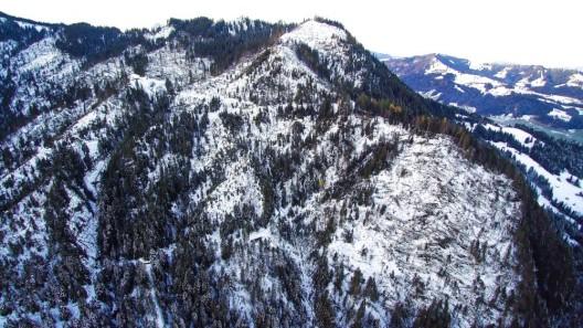 Föhnsturm von Mitte November richtet lokale Waldschäden an