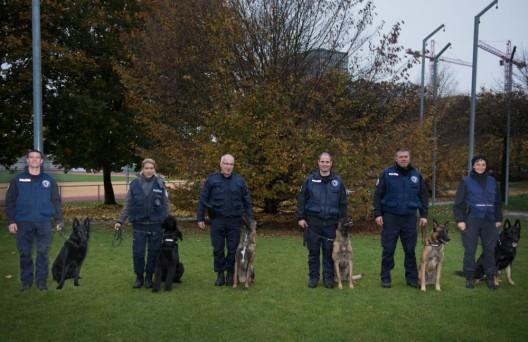 Risch Rotkreuz ZG: Polizeihundeprüfung 2019 - Elik geht als Sieger hervor