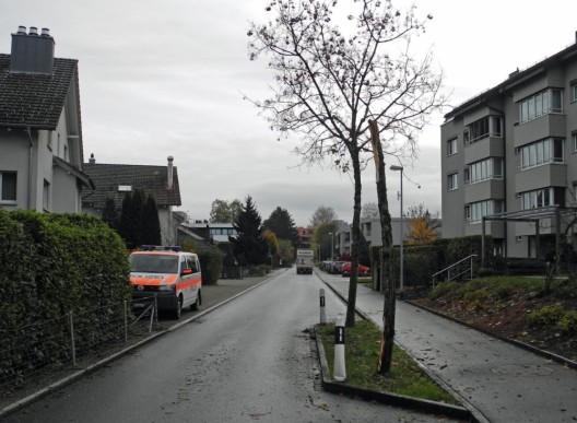 Lachen SZ: Mit Pfosten und Baum kollidiert und weitergefahren - Zeugenaufruf