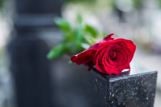 38-Jährige erlitt bei einem Verkehrsunfall tödliche Verletzungen