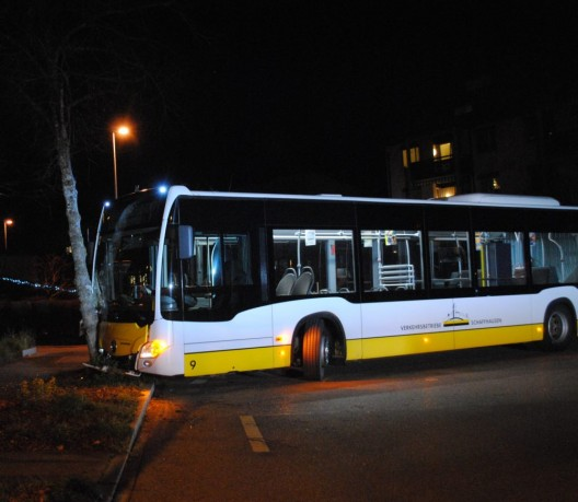 Schaffhausen SH: Linienbus prallt gegen Baum – niemand verletzt