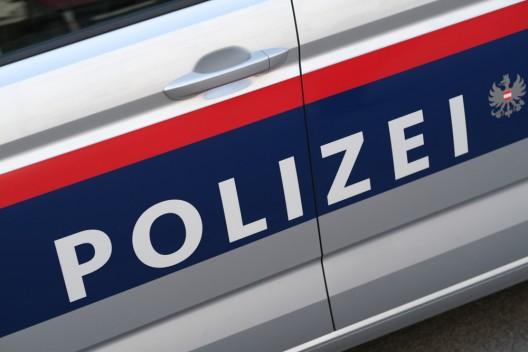 Unfall mit einem Schlitten in der Gemeinde Reichenau