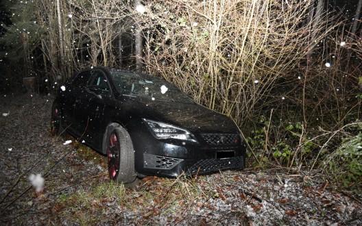 Schaan (FL): Selbstunfall aufgrund nicht angepasster Geschwindigkeit