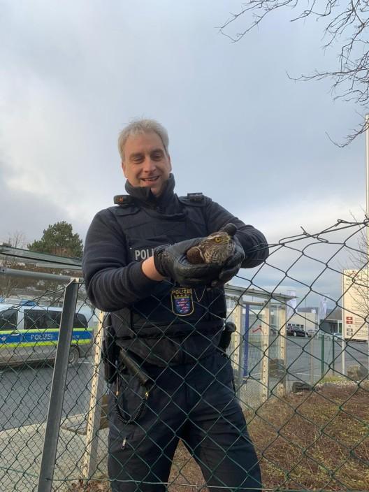 Polizei als Retter in der Not - Beamten der Polizei retten einen Falken aus misslicher Lage