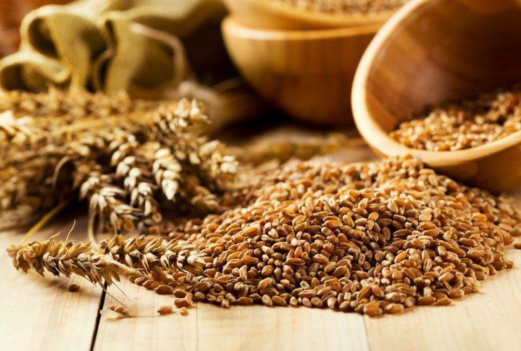 Kleie gehört zu den Produkten mit dem höchsten Anteil an Ballaststoffen und Vitaminen. (Bild: © Nitr - fotolia.com)