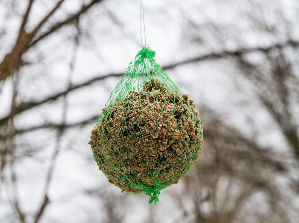 Wildvögel kommen besser über den Winter, wenn sie zusätzlich gefüttert werden. (Bild: g215 / Shutterstock.com)