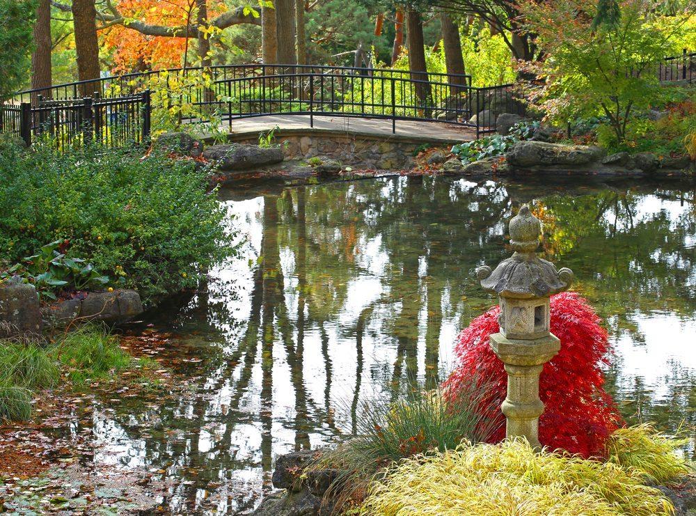 Ein schöner Gartenteich ist ein echter Hingucker und bereitet viel Freude. Wir zeigen Ihnen, wie das Anlegen eines Teiches spielend leicht gelingt. (Bild: alexvirid / Shutterstock.com)