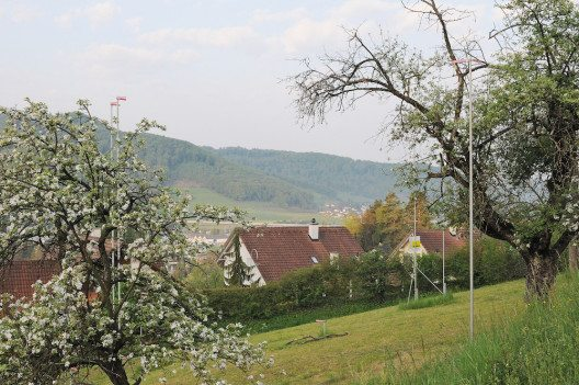 Obstgarten (Bild: © BirdLife Schweiz)