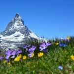 Restaurant Furri: Walliser Spezialitäten mit Blick auf das Matterhorn geniessen
