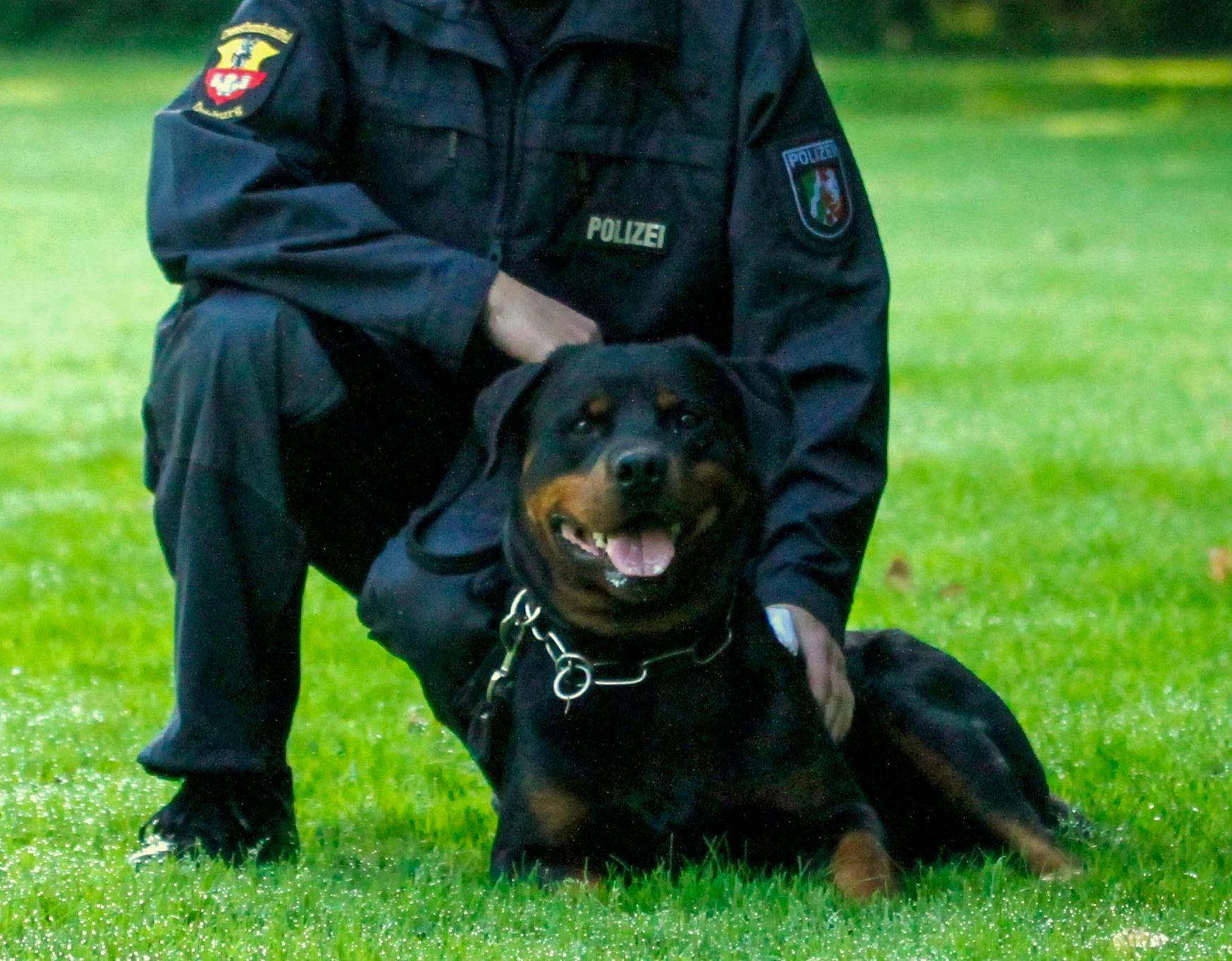 Polizeinews Duisburg