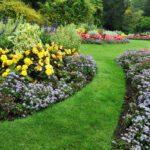 Armin Trinkler – Gartenpflege GmbH: Ihr Gartenpflegeprofi in Holzhäusern ZG