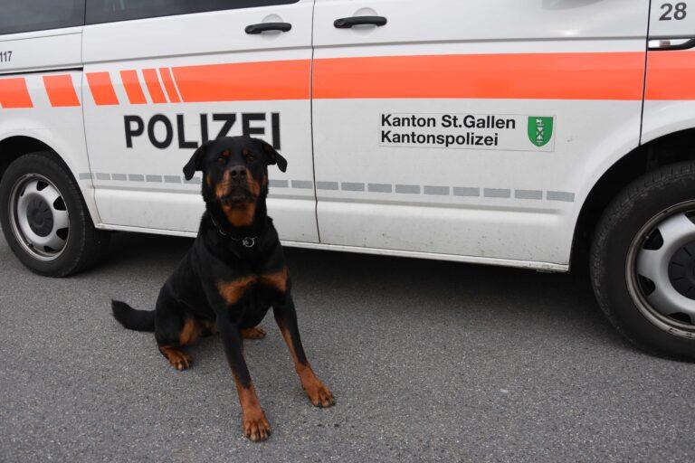 Aktuelle Polizeimeldungen Köln