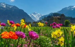 Wetter-Schweiz: Definitive Monatsbilanz Juli 2020