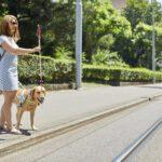 Schweizerischer Blindenbund - Selbsthilfe blinder und sehbehinderter Menschen