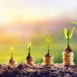 Fekete Wealth - Finanzielle Freiheit mit Hilfe von Investment-Profis